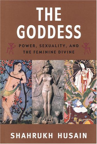 Goddess Power, Sexuality, and the Feminine Divine  2003 9780472089345 Front Cover
