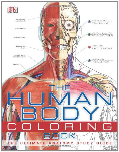 Human Body  N/A 9780756682347 Front Cover
