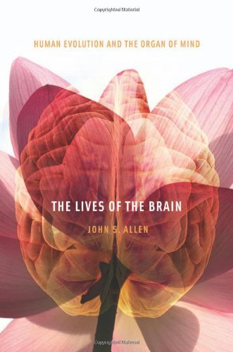 Lives of the Brain Human Evolution and the Organ of Mind  2009 9780674035348 Front Cover
