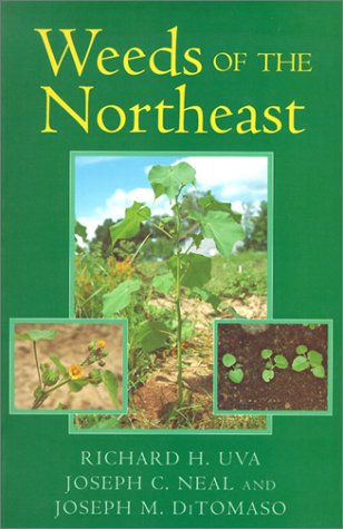 Weeds of the Northeast   1997 edition cover