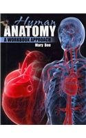 Human Anatomy A Workbook Approach Revised  edition cover