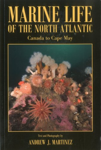 Marine Life of the North Atlantic Canada to Cape May  2010 edition cover
