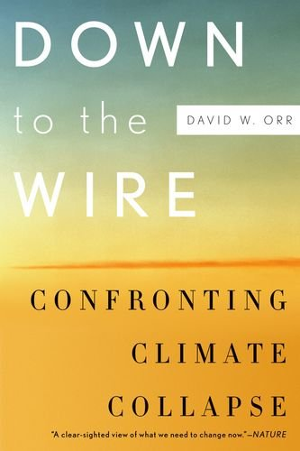 Down to the Wire Confronting Climate Collapse  2012 edition cover