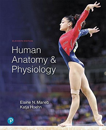 Human Anatomy & Physiology + Masteringa&p With Pearson Etext:  11th 2018 9780134756363 Front Cover