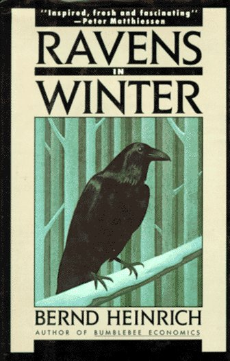 Ravens in Winter  N/A edition cover