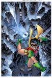 Robin the Boy Wonder A Celebration of 75 Years  2015 9781401255367 Front Cover