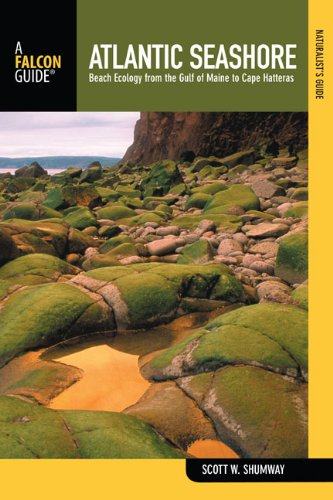 Naturalist's Guide to the Atlantic Seashore Beach Ecology from the Gulf of Maine to Cape Hatteras N/A edition cover