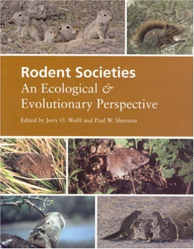 Rodent Societies An Ecological and Evolutionary Perspective  2007 9780226905372 Front Cover