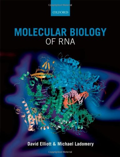 Molecular Biology of RNA   2010 9780199288373 Front Cover