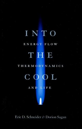 Into the Cool Energy Flow, Thermodynamics, and Life  2006 edition cover