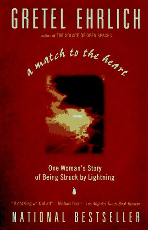 Match to the Heart One Woman's Story of Being Struck by Lightning N/A edition cover