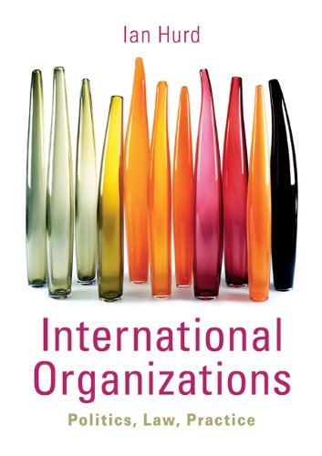 International Organizations Politics, Law, Practice  2010 edition cover