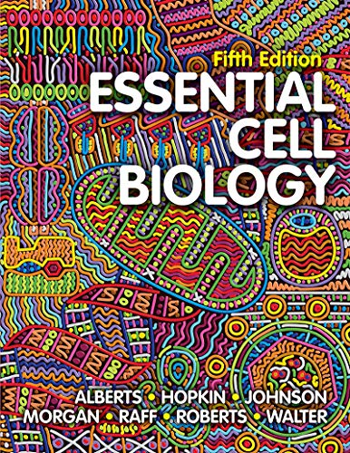 Essential Cell Biology:   2018 9780393680379 Front Cover