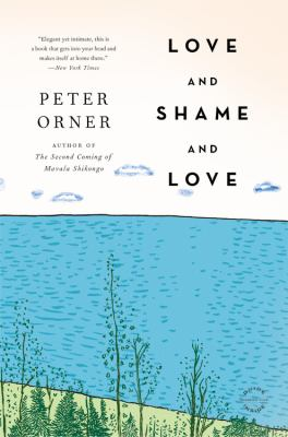 Love and Shame and Love  N/A 9780316129381 Front Cover