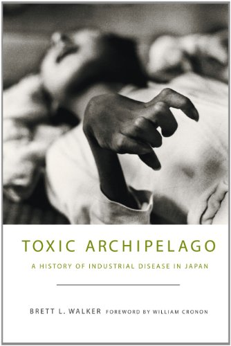 Toxic Archipelago A History of Industrial Disease in Japan  2011 9780295991382 Front Cover