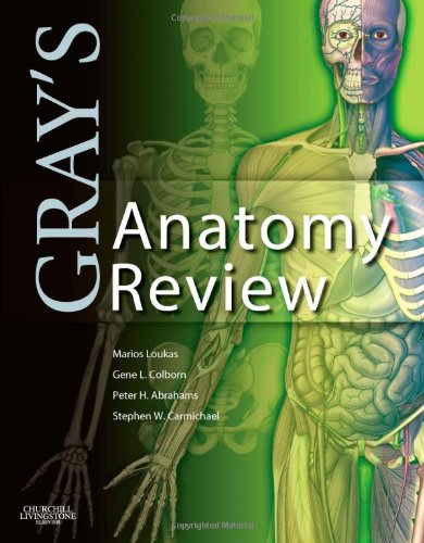 Gray's Anatomy Review   2009 edition cover
