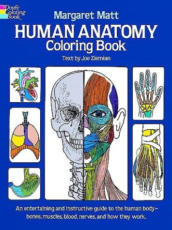 Human Anatomy Coloring Book   1982 edition cover
