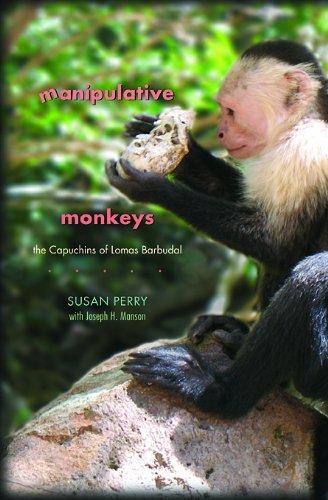 Manipulative Monkeys The Capuchins of Lomas Barbudal  2008 edition cover