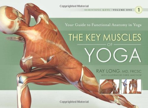 Key Muscles of Yoga Your Guide to Functional Anatomy in Yoga 3rd 2006 9781607432388 Front Cover