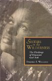 Sisters in the Wilderness The Challenge of Womanist God-Talk N/A edition cover