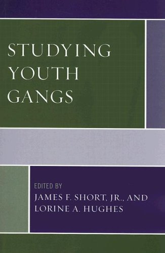 Studying Youth Gangs   2006 edition cover