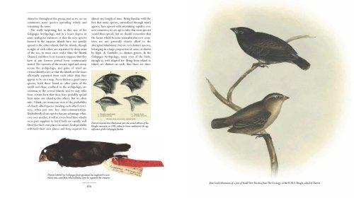 Origin of Species   2008 edition cover