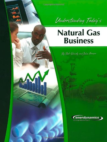 Understanding Today's Natural Gas Business   2003 edition cover