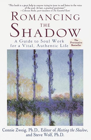 Romancing the Shadow  N/A edition cover