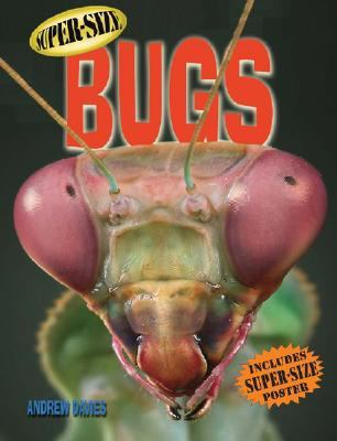 Super-Size Bugs  N/A 9781402753404 Front Cover