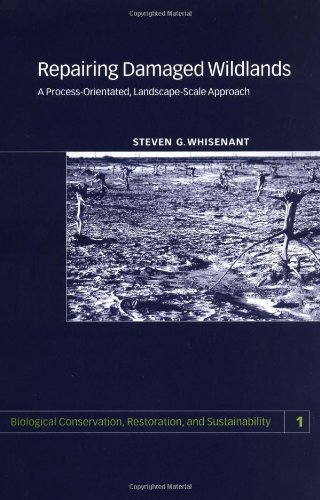 Repairing Damaged Wildlands A Process-Orientated, Landscape-Scale Approach  1999 edition cover