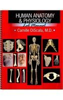 Human Anatomy and Physiology Lab Manual  2009 (Revised) 9780757560408 Front Cover