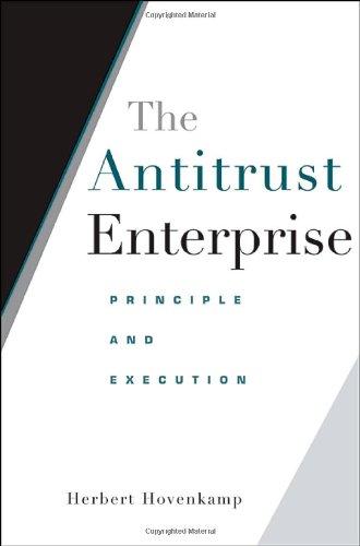 Antitrust Enterprise Principle and Execution  2005 edition cover