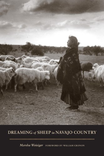Dreaming of Sheep in Navajo Country   2011 edition cover