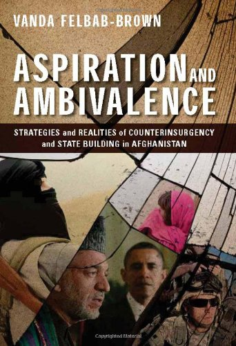 Aspiration and Ambivalence Strategies and Realities of Counterinsurgency and State-Building in Afghanistan  2013 edition cover