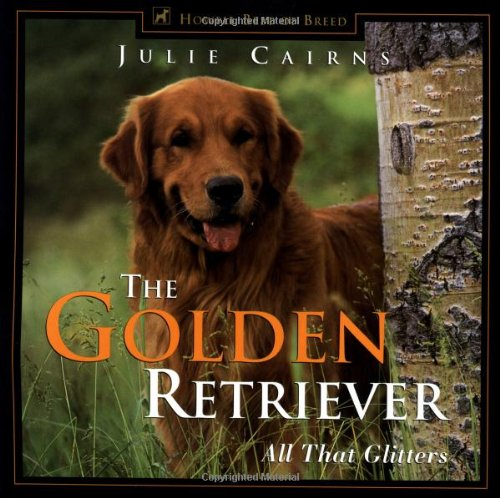 Golden Retriever All That Glitters  1999 9780876050415 Front Cover