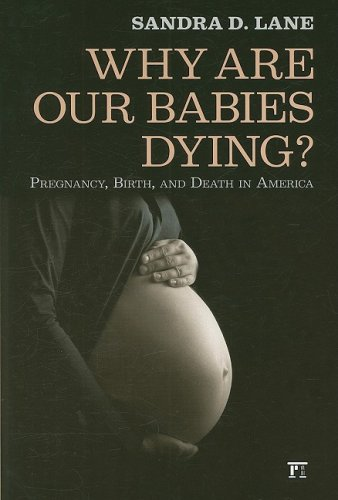 Why Are Our Babies Dying? Pregnancy, Birth, and Death in America  2008 9781594514418 Front Cover
