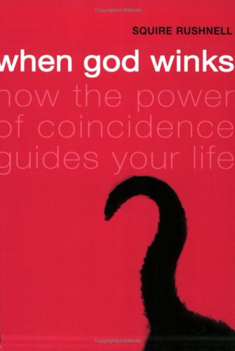 When God Winks N/A edition cover