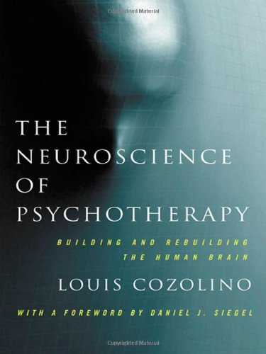 Neuroscience of Psychotherapy Healing the Social Brain 2nd 2010 edition cover