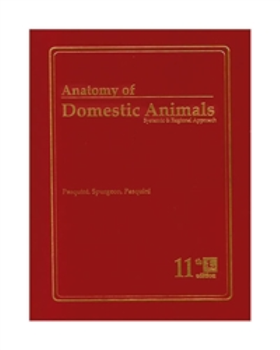 Anatomy of Domestic Animals Systemic and Regional Approach 11th 2007 9780962311420 Front Cover