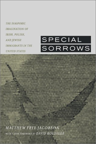 Special Sorrows The Diasporic Imagination of Irish, Polish, and Jewish Immigrants in the United States  2002 edition cover