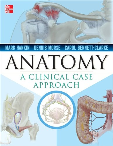 Clinical Anatomy A Case Study Approach  2013 edition cover
