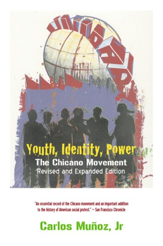 Youth, Identity, Power The Chicano Movement 2nd 2007 edition cover