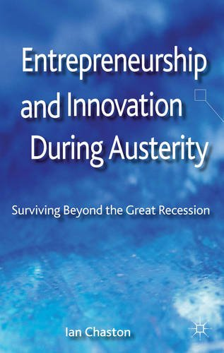 Entrepreneurship and Innovation During Austerity Surviving Beyond the Great Recession  2013 9781137324429 Front Cover