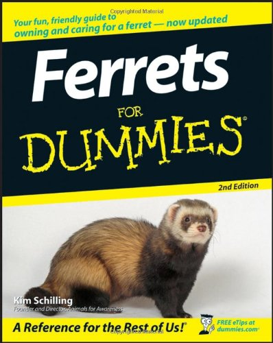 Ferrets for Dummies�  2nd 2007 edition cover
