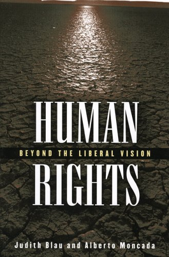 Human Rights Beyond the Liberal Vision  2004 9780742542433 Front Cover