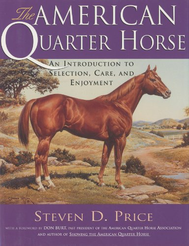 American Quarter Horse An Introduction to Selection, Care, and Enjoyment  1999 9781558216433 Front Cover