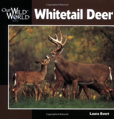 Whitetail Deer   2000 9781559717434 Front Cover
