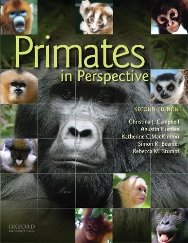 Primates in Perspective  2nd 2011 edition cover