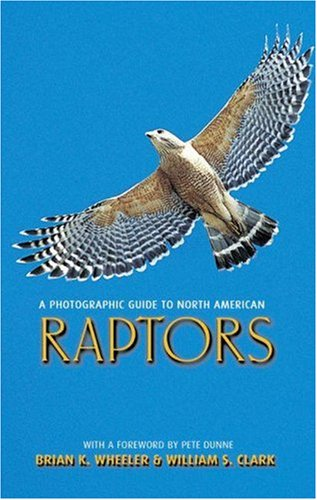 Photographic Guide to North American Raptors   2003 edition cover