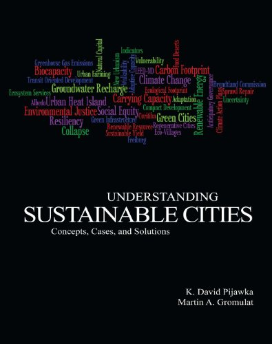 Understanding Sustainable Cities Concepts Cases and Solutions Revised  edition cover